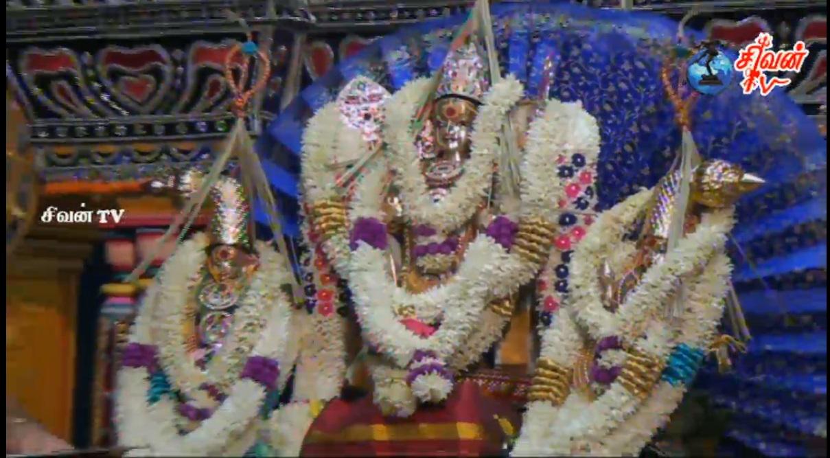 சூரிச் – அருள்மிகு சிவன் கோவில் கந்தசட்டி திருக்கல்யாணம் 06.11.2016